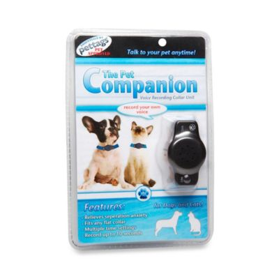 The Pet Companion by Hagen in Black