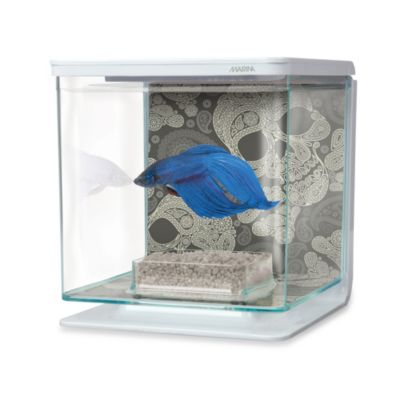 Marina Skull-Theme Betta Aquarium Kit