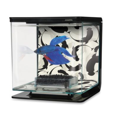 Marina Ying Yang Theme Betta Kit