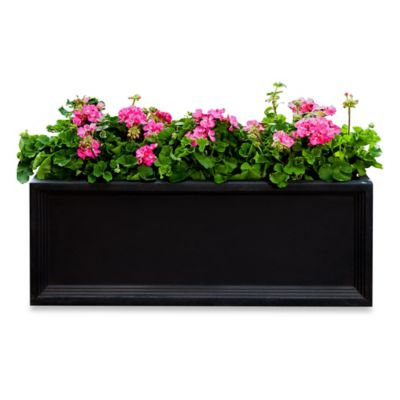 Campania Denbigh Window Flower Box