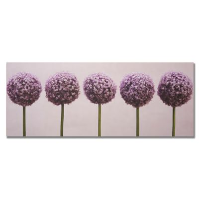 Row of Alliums Canvas Art