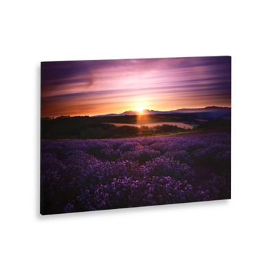 Lavender Sunset Landscape Canvas Wall Art