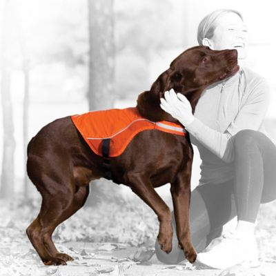 Kurgo® Reflect and Protect X-Small Active Dog Vest