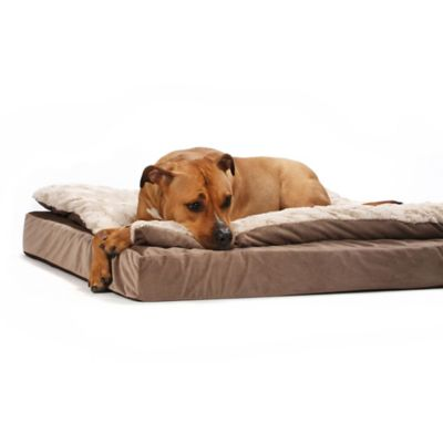 Kenny Super Pillow Top 30-Inch x 40-Inch Pet Bed