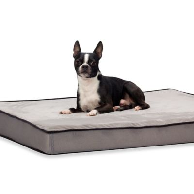 Ellen Active Air Cooling 30-Inch x 40-Inch Pet Bed in Grey