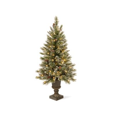 National Tree 4-Foot Glittery Bristle Pine with 100 Pre-Strung Clear Incandescent Lights