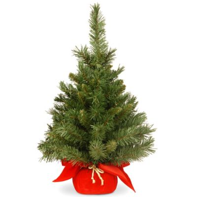 National Tree 24-Inch Majestic Fir in Red Cloth Bag