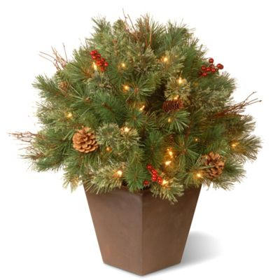 National Tree 24-Inch Pre-Lit Glistening Pine Topiary Bush
