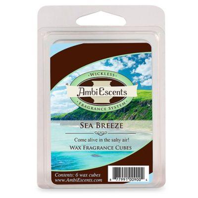 Sea Breeze Fragrance Cubes