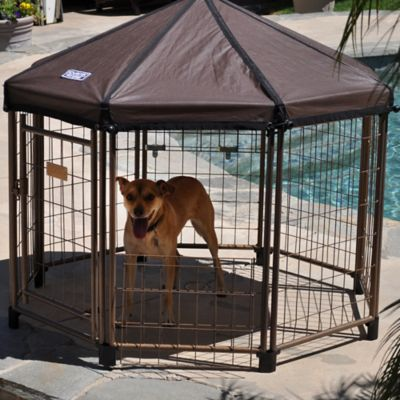 Advantek 4-Foot Cabana Pet Gazebo