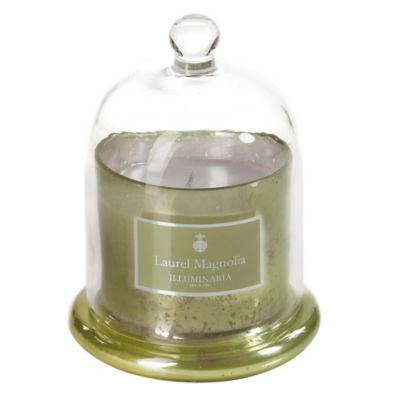 Illuminaria Dome Candle Jar in Laurel Magnolia