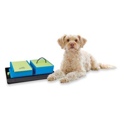 Trixie Poker Box Vario 1 Dog Game (Level 1)