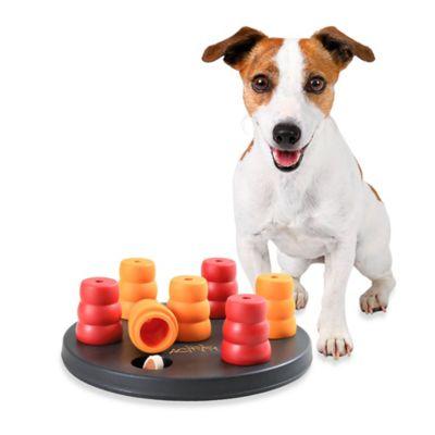 Trixie Mini Solitaire Dog Game (Level 1)