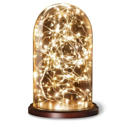 Loft Living Cloche with 20-Foot LED String Lights - Bed Bath & Beyond