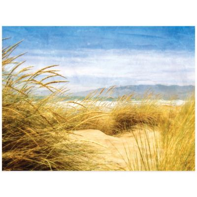 Dune Grass 4 Wall Art