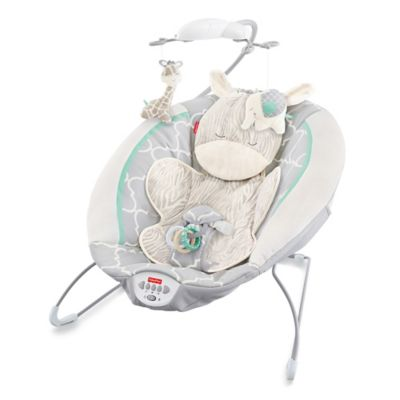 Activity > Fisher-Price® Deluxe Bouncer in Safari Dreams