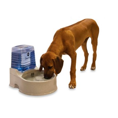 K&H CleanFlow™ Large Filtered Water Bowl with Reservoir