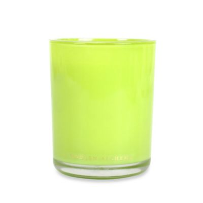 Modern Alchemy Pulp Scented 2-Wick Candle Tumbler in Green