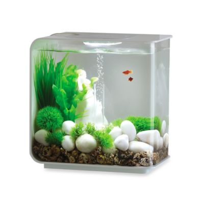 biOrb Flow 15-Liter Aquarium in White