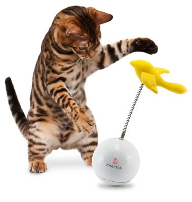 FroliCat Cat Toy