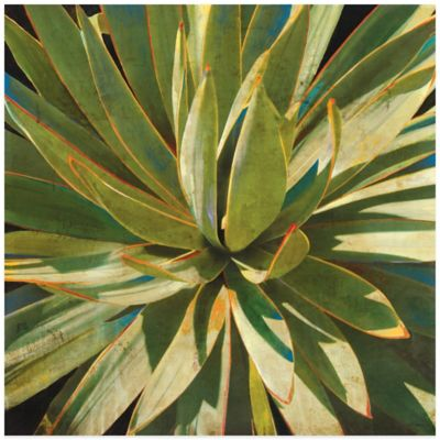 Sweet Agave Wall Art