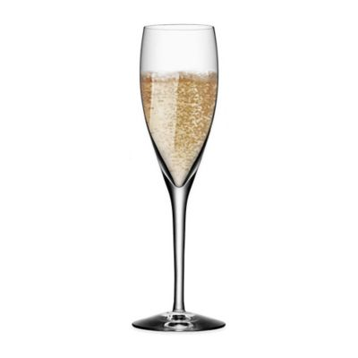 Orrefors More Champagne Flute (Set of 4)