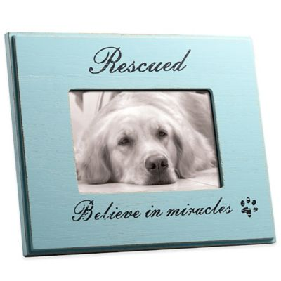 "Blue Wood ""Rescued: Believe in Miracles"" 4-Inch x 6-Inch Pet Frame"