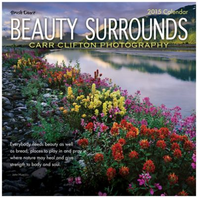 Brush Dance Beauty Surrounds 2015 Wall Calendar
