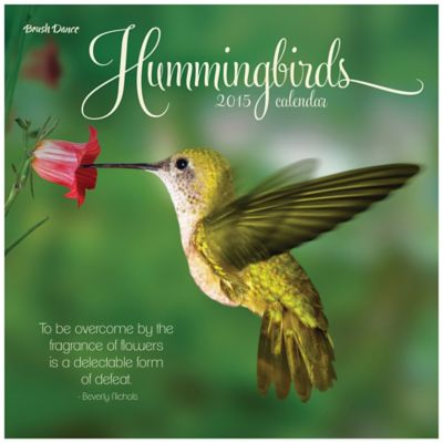 Brush Dance Hummingbirds 2015 Wall Calendar