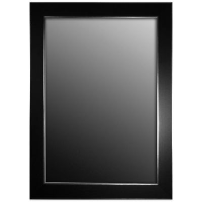 Hitchcock-Butterfield 18-Inch x 36-Inch Wall Mirror in Black Forest with Silver Edged Trim