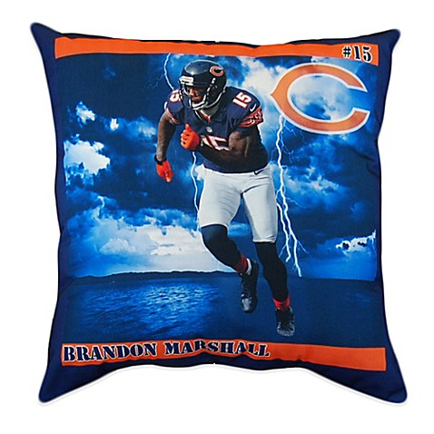 Bed Bath And Beyond Chicago Pillow