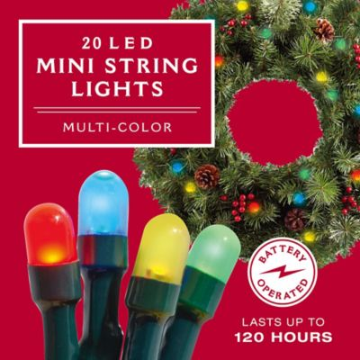 20 LED Mini Light String Set in Multi