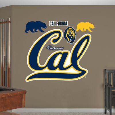 Fathead® University of California Golden Bears Logo Wall Graphic