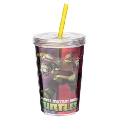 Zak! Designs® Teenage Mutant Ninja Turtles™ 13 oz. Double Wall Tumbler with Straw
