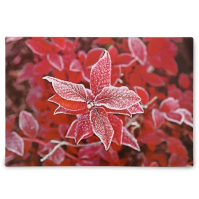 Flowers Placemats