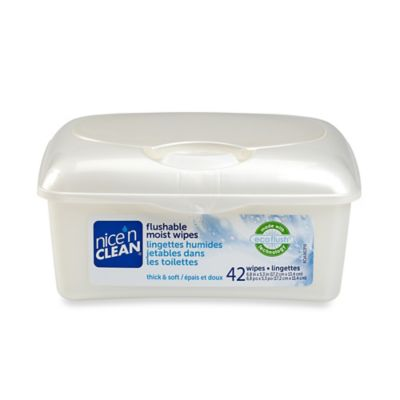Nice 'n Clean® 48-Count Flushable Moist Wipes