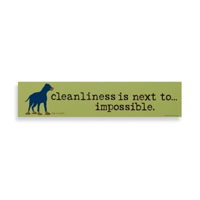 Cleanliness is Next to Impossible Decorative Sign