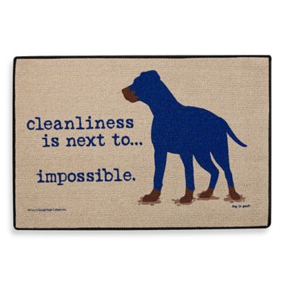 Cleanliness Impossible Doormat