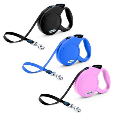 Flexi Durabelt 10-Foot Extra-Small Retractable Dog Leash in Blue