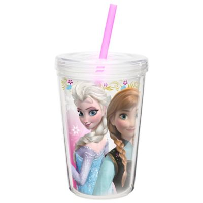 Zak! Designs® Disney® Frozen Anna & Elsa 13 oz. Double Wall Tumbler with Straw