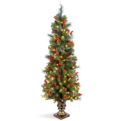 National Tree Crestwood Spruce 5-Foot Pre-Lit Entrance Christmas Tree