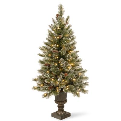 National Tree Glittery Bristle 5-Foot Pre-Lit Entrance Christmas Tree