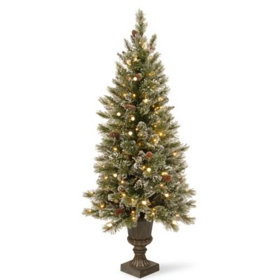 National Tree 4-Foot Glittery Bristle Pre-Lit Entrance Christmas Tree with Clear Lights