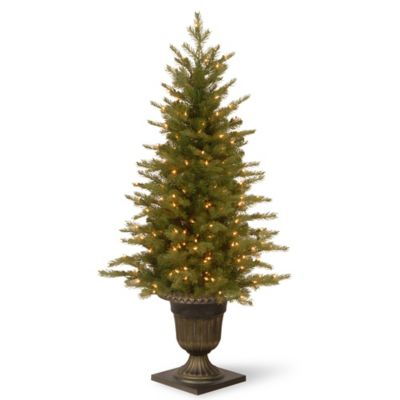 National Tree 4-Foot Nordic Spruce Entrance Christmas Tree with Clear Lights