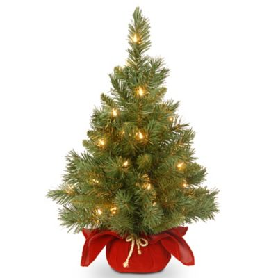 National Tree 2-Foot Majestic Fir Christmas Tree with Clear Lights