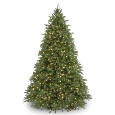 Real Fraser Fir Christmas Tree