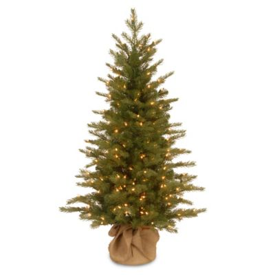 National Tree 4-Foot Nordic Spruce Christmas Tree Pre-Lit with Clear Lights