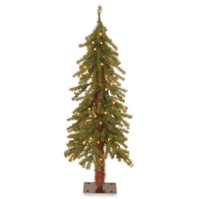 National Tree 3-Foot Hickory Cedar Christmas Tree Pre-Lit with Clear Lights
