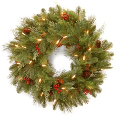 National Tree 24-Inch Noelle Christmas Wreath