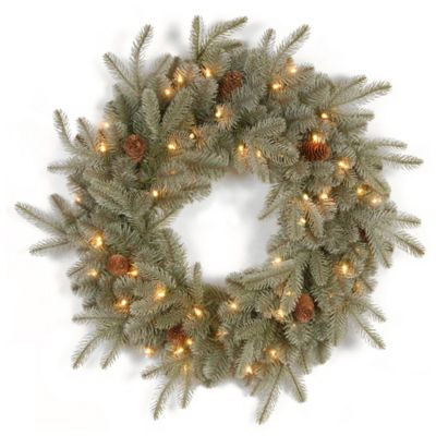 National Tree 24-Inch Feel-Real® Frosted Arctic Christmas Spruce Wreath with Clear Lights